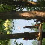 Treetop Trekking&Zipline07