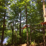 Treetop Trekking&Zipline09