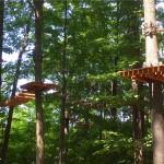 Treetop Trekking&Zipline10