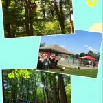 Treetop Trekking&Zipline19