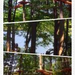 Treetop Trekking&Zipline24